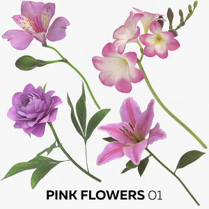 3D pink flowers 01