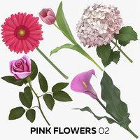 pink flowers 02 3D model