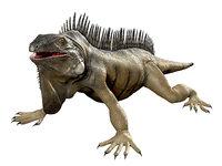 3D Iguana Film Ready Model