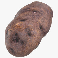 purple potato ready 04 3D model