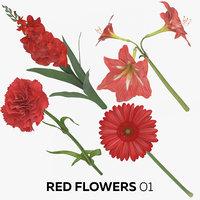 3D model red flowers 01