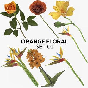 3D model orange floral set 01
