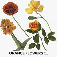 orange flowers 01 model