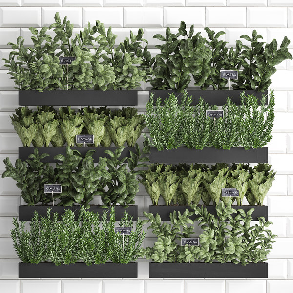 3D decorative plants kitchen