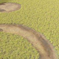 ground grass 3D