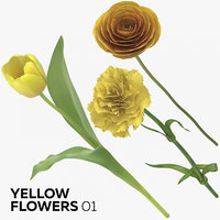 3D yellow flowers 01