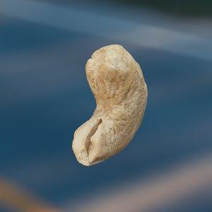 cashews octane 3D model