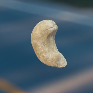 3D cashews octane