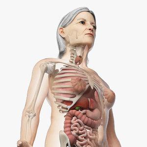 Turbosquid éducation 01_elder_female_organs_square.jpgDCE270CD-B9AD-4885-A49F-3E78500005B0Res300