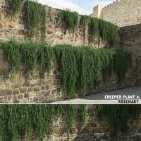 3D creeper plants: rosemary