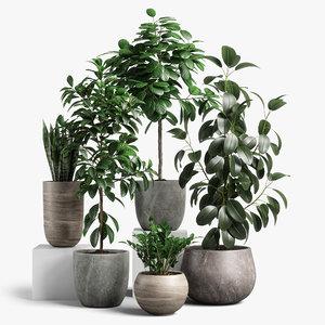 3D model plants set 10