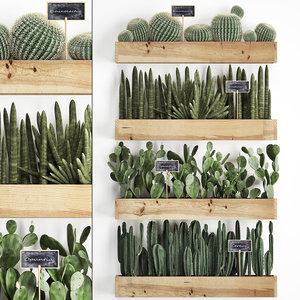 3D plants cactus wall decor model
