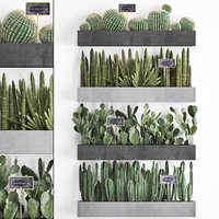 3D plants cactus wall decor