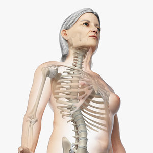 skin elder female skeleton model