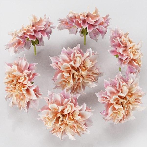 3D model garden dahlia pink