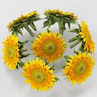 3D flower sunflower yellow