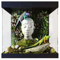 3D lizards