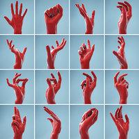 13 Female Hands Collection