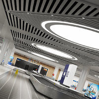Baggage Reclaim Room