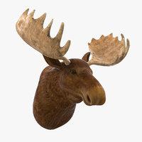 3D moose head trophy model