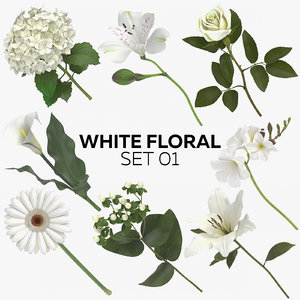 3D white floral set 01 model