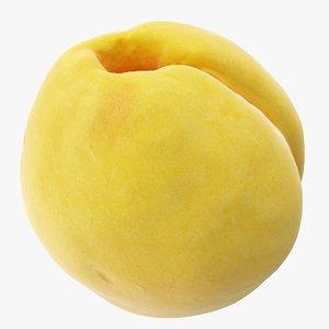 3D apricot 01 hi polys