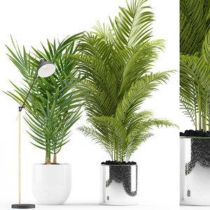 plants 191 palm light model