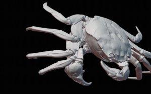 3D mokuzugani crab