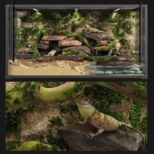 reptile terrarium agama 3D model