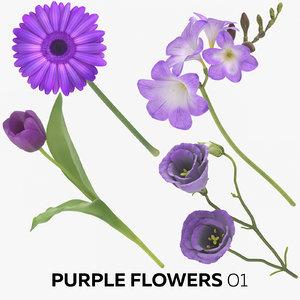 3D purple flowers 01