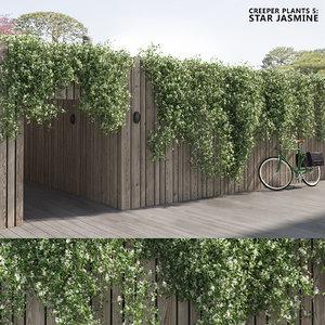 creeper plants 5: star 3D model