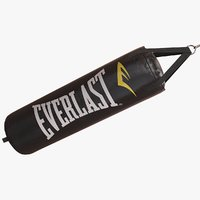 punching bag everlast 3D