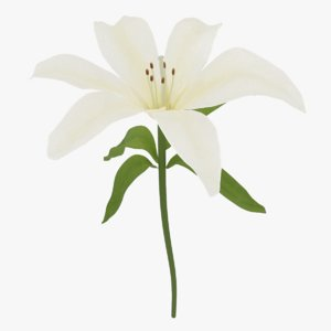 3D flower petals model