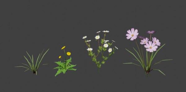 3D model grass flowers asset