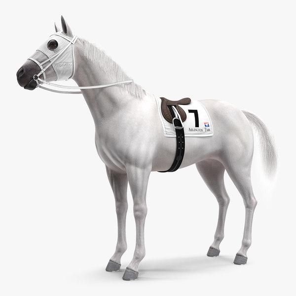 3D racehorse white animal horse model
