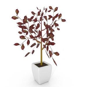 3D model red robin plant pot
