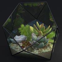 Florarium decorative
