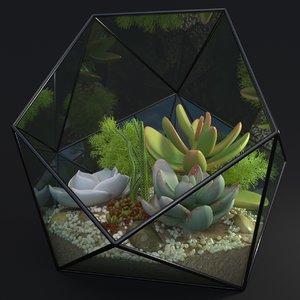 florarium tropical geometric model