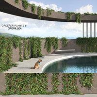 3D model creeper plants 6: grevillea