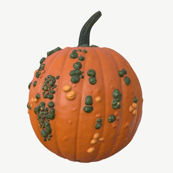 3D pumpkin warts