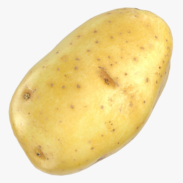potato clean ready 05 3D model