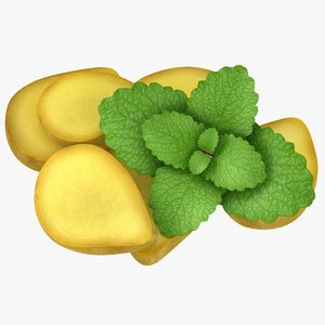 realistic ginger slice mint 3D model