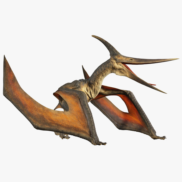 pteranodon rig animation model