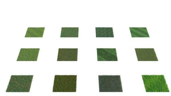 3D model realistic grass assistant