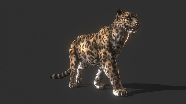 leopard animal beasts model