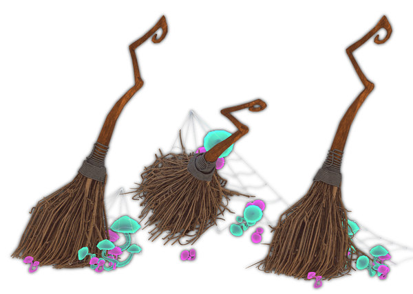3D model witch broom