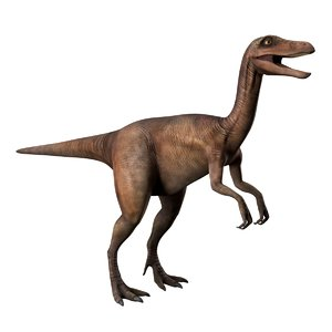 realistic gallimimus rigged 3D model