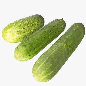 cucumbers 01-03 hi 3D model