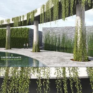 creeper plants 8: epipremnum 3D