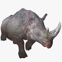 rhinoceros animal rhino 3D model